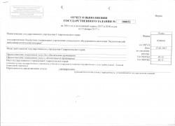 Отчет о выполнении государственного задания 20016 года стр.1